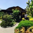 Golden Week Onsen Experience – Utanoyu